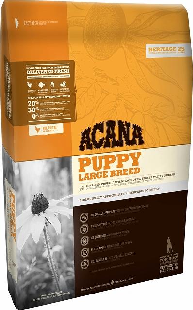 【アウトレット賞味期限2019年4月7日】アカナ パピーラージブリード 11.4kg (大型犬子犬用)おやつのプレゼント付き