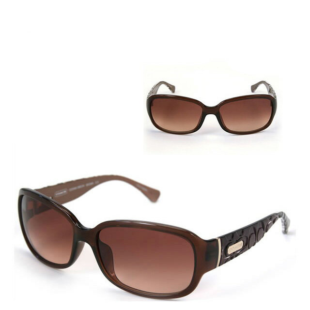 1afcd290b0815 210 COACH coach sunglasses S631A Oceana Brown Ose hole brown horse mackerel  Ann fitting model sale new work brand fs3gm