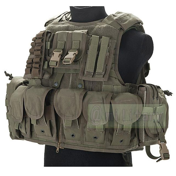 FLYYE RAV Vest with Pouch set RG