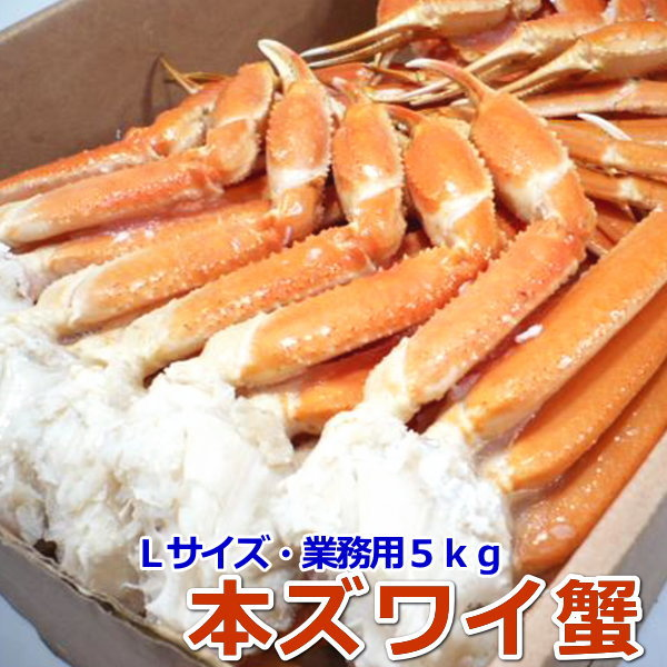 〈ボイル済〉本ずわい蟹 Lサイズ 大容量5kg 【ロシア産】 【かに 蟹 カニ ずわい ズワイ 本ズワイ】【ギフト】・本ズワイ蟹5kg【L】・