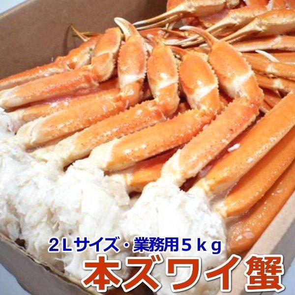 〈ボイル済〉本ずわい蟹 2Lサイズ 大容量5kg 【ロシア産】 【かに 蟹 カニ ずわい ズワイ 本ズワイ】【ギフト】・本ズワイ蟹5kg【2L】・