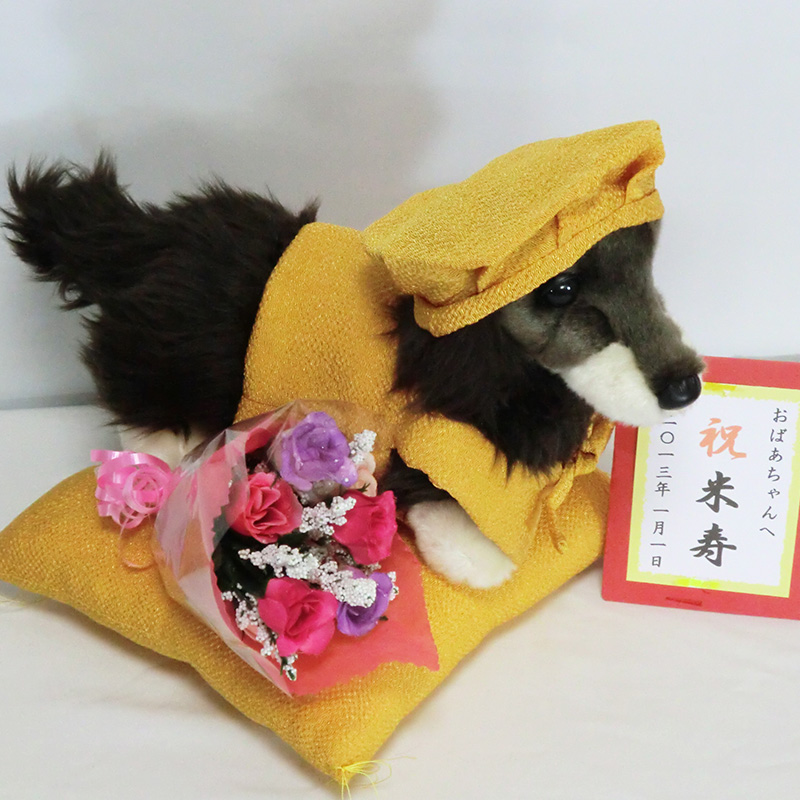 Original holiday beiju miniature Dachshund plush vest M size 3