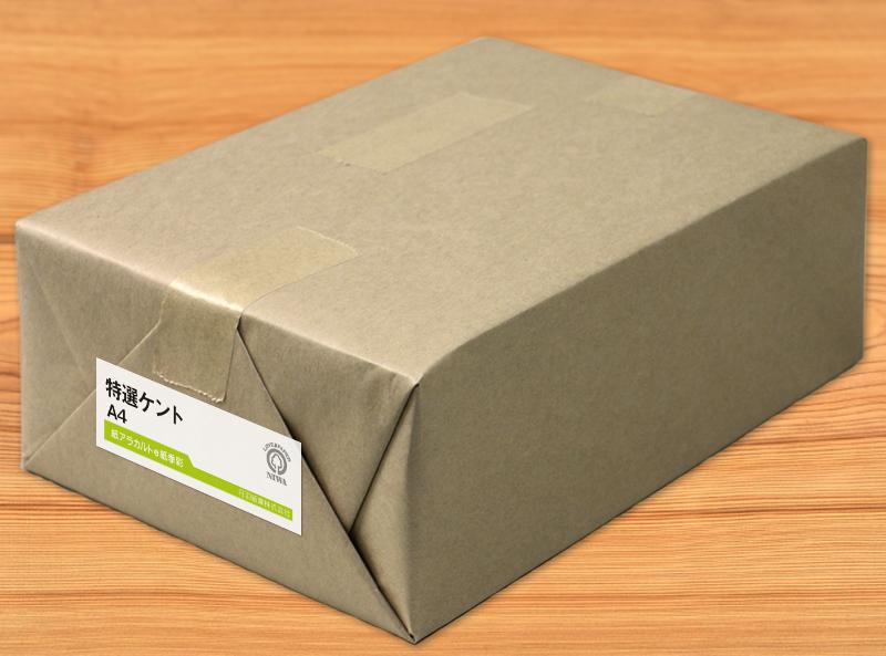 特選ケント紙 110kg ケント紙 B4 1600枚 【当日発送可】【サイズ変更可】