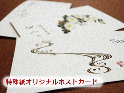 特殊紙ポストカード印刷/はがき印刷両面カラー 80枚