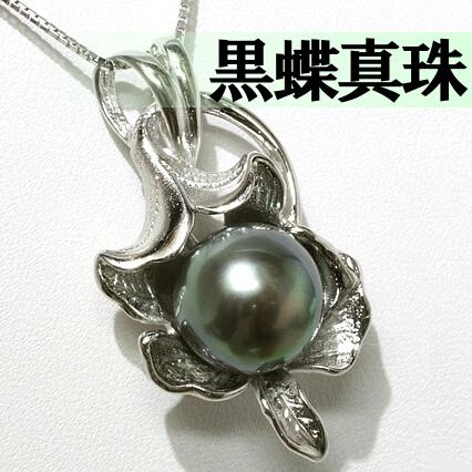 黒蝶真珠ネックレス 色、テリ、形が良く傷の少ないタヒチ★パール