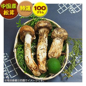 中国産松茸 捧呈 :特選松茸:約100g 《週末限定タイムセール》