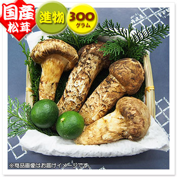 【国産松茸】:進物松茸:約300g(約4~10本):岡山/兵庫/岩手県産