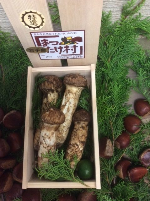 【国産松茸】:特選松茸:約400g長野県産