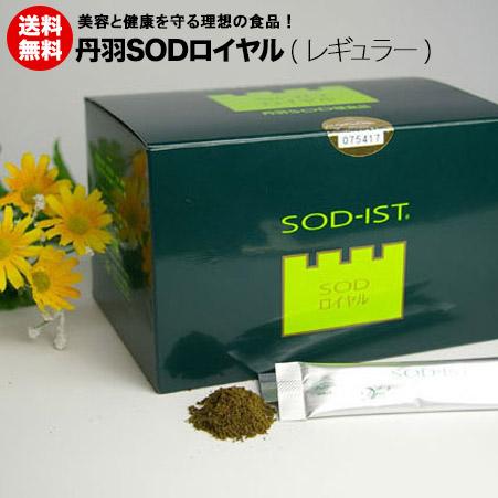 SOD 丹羽SODロイヤル レギュラー【送料無料】プレゼント中!!