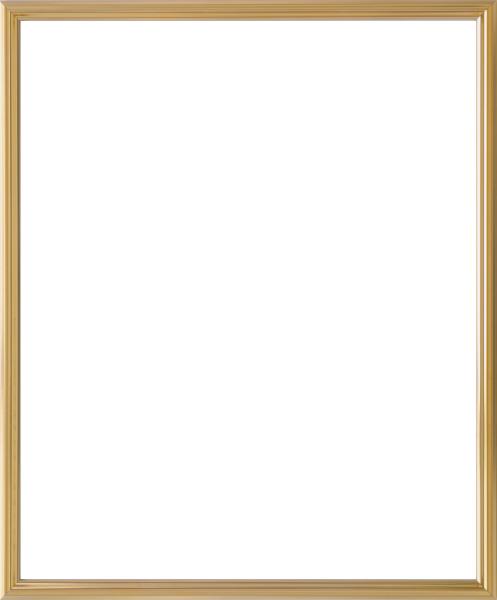 デッサン用 額縁 5002 大全紙(727X545mm) ゴールド 金 -新品