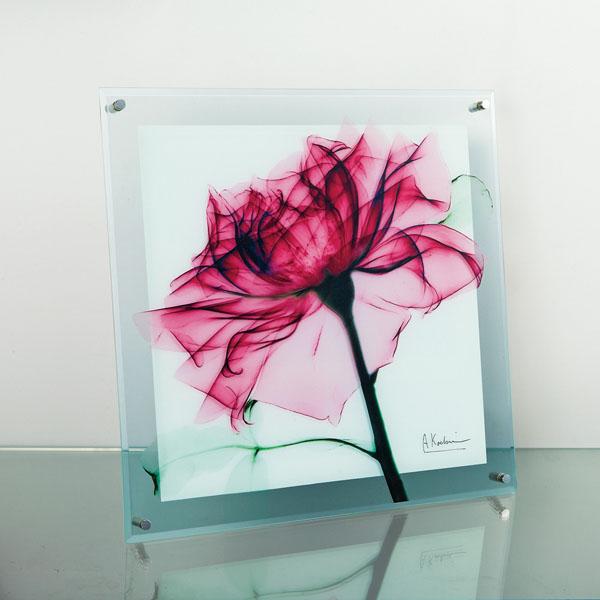透明感のあるガラスアート X 訳あり RAY ガラスアート ティール XR-05001-新品 Mサイズ ローズ ☆新作入荷☆新品