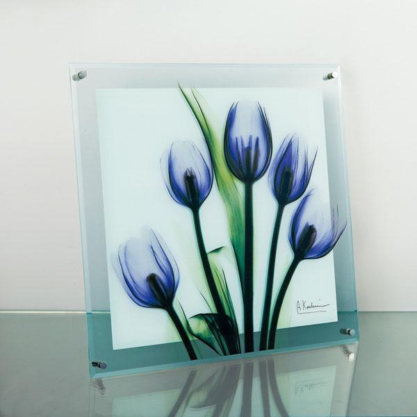 X RAY ガラスアート 「チューリップ イマジン(Lサイズ)」 XR-07003-新品