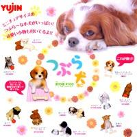 つぶら犬 ミニチュアサイズの可愛小犬 小型犬 おもちゃ ガチャガチャ ユージン (全10種フルセット)【即納】