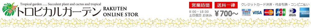トロピカルガーデン埼玉:プルメリア・その他熱帯植物・多肉植物販売のトロピカルガーデン