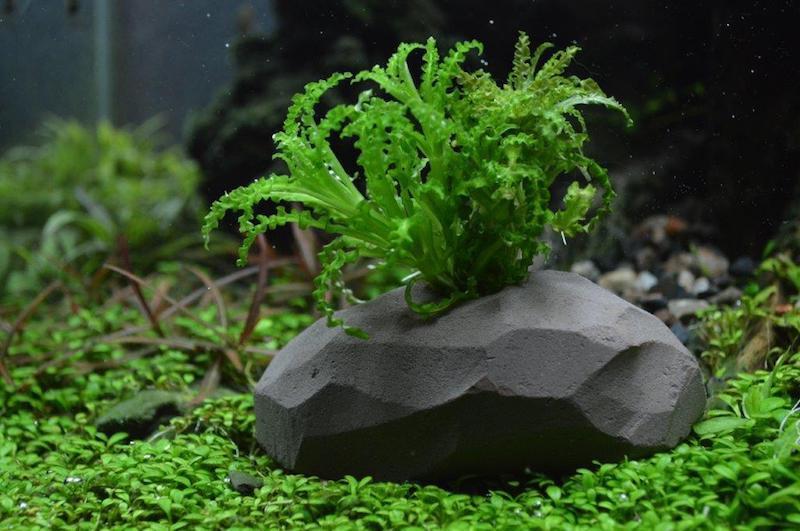 サンミューズ 水をキレイにする石 穴あきタイプS 【熱帯魚・アクアリウム/水質管理用品/水質調節剤】