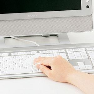 サンワサプライ OAウェットティッシュ ( パソコン用 ) CD-WT1P30 パソコン用クリーナー 15枚入 ;2個セット ウエットティッシュ 大掃除に最適 【 あす楽 】 【  】