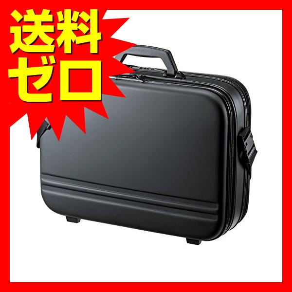 サンワサプライ セミハードPCケース (ダブル) BAG-716BK2 メンズ ダブル ブラック 17.3型ワイド対応 ビジネスバッグ 【あす楽】 【送料無料】