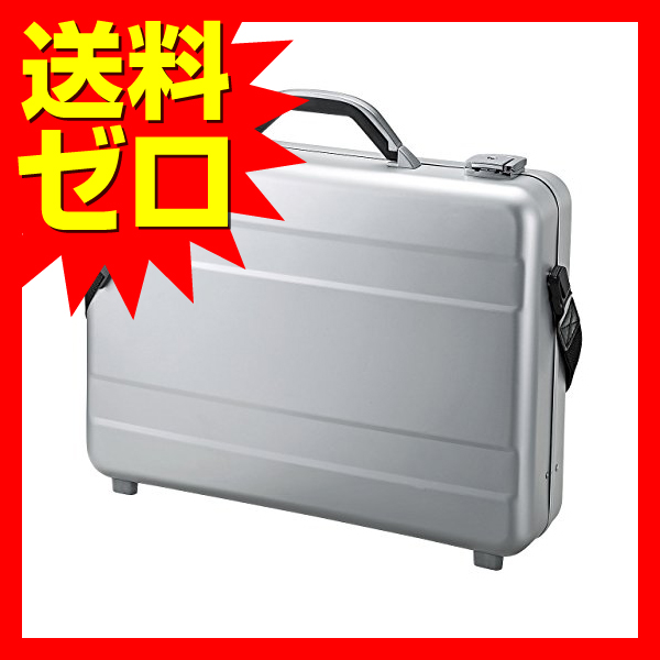 サンワサプライ BAG-AL4 PCアルミケース BAG-AL4【 あす楽【 PCアルミケース】, サワグン:accf45b1 --- officewill.xsrv.jp