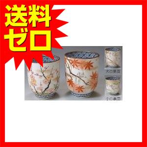 清水焼 彩花鳥 組湯呑 UIS577|1805SDTT^