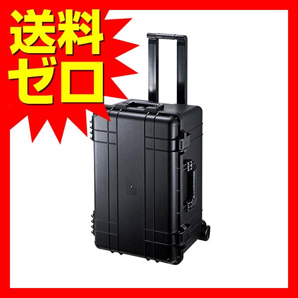 サンワサプライ ハードツールケース(キャリータイプ)☆BAG-HD5★【あす楽】【送料無料】|1302SAZC^