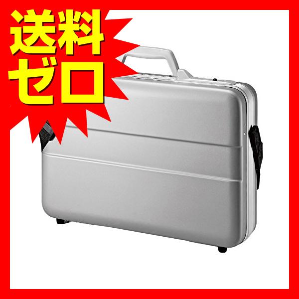 サンワサプライ ABSハードPCケース☆BAG-ABS5N2★【あす楽】【送料無料】|1302SAZC^