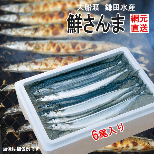 三陸大船渡より、とれたて秋刀魚を網元から直送します  産地直送 三陸生サンマ 鎌田水産 鮮さんま 6尾 K-11