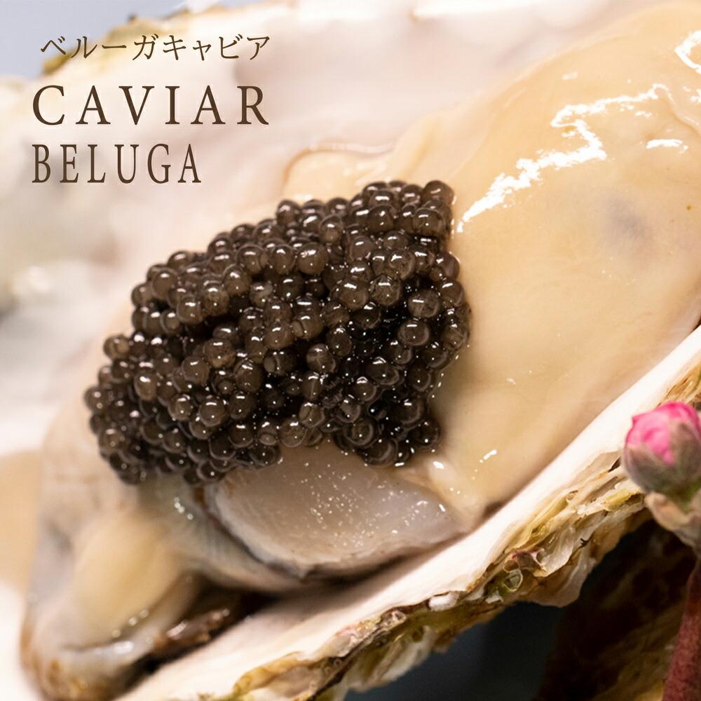 ドイツ産最高級食材魚の卵beluga caviarフレッシュベルーガキャビア50g