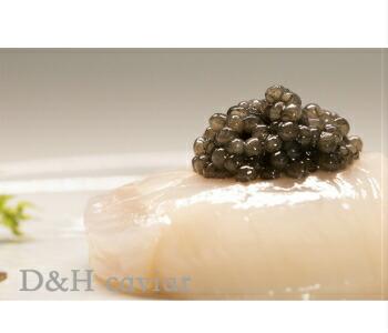 ドイツ産 高級食材魚の卵caviarフレッシュオショートルキャビア100g