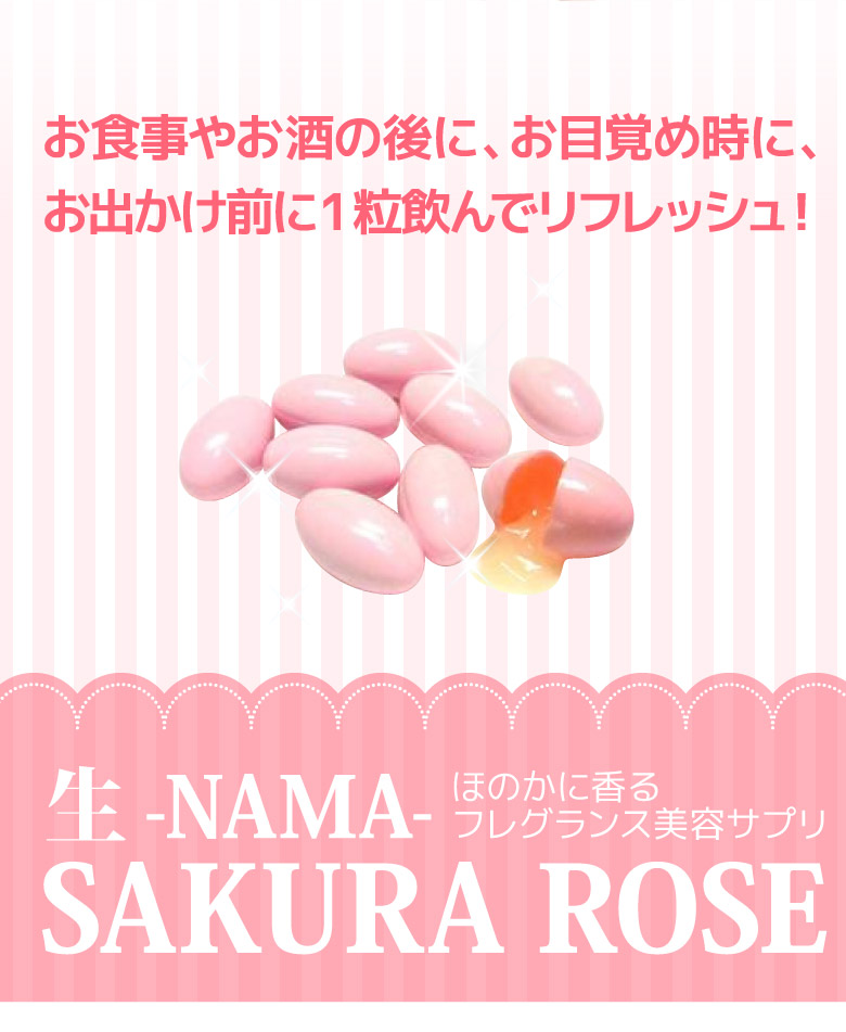생-NAMA-SAKURA ROSE 체리 로즈 6 자루 세트 판매