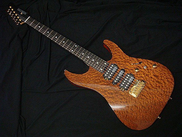 SCHECTER NV-DX-24-MH-VTR/E LACE WOOD シェクター【送料無料】【新品アウトレット】【限定モデル】