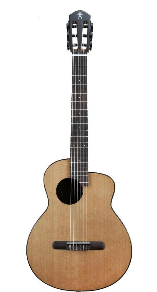 aNueNue aNN-MN14E エレガットギター ナイロン弦モデル アヌエヌエ バードギター【送料無料】【新品】