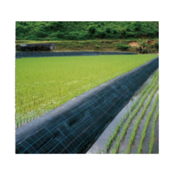 防草シート アグリシート(防草シート) 幅2m×長さ100m 黒