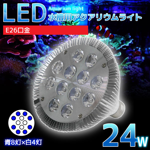 特価キャンペーン E26口金 24W 珊瑚 植物育成 水草用 水槽用 LED アクアリウムスポットライト スーパーSALE開始4時間限定5%OFF LEDアクアリウムスポットライト LEDライト 水槽用照明 まとめ買い特価 青8灯×白4灯 鑑賞魚 QL-07 さらにエントリーで5倍確定