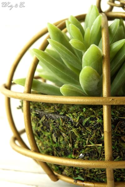 auc-wutty | Rakuten Global Market: Artificial houseplant Succulent ...