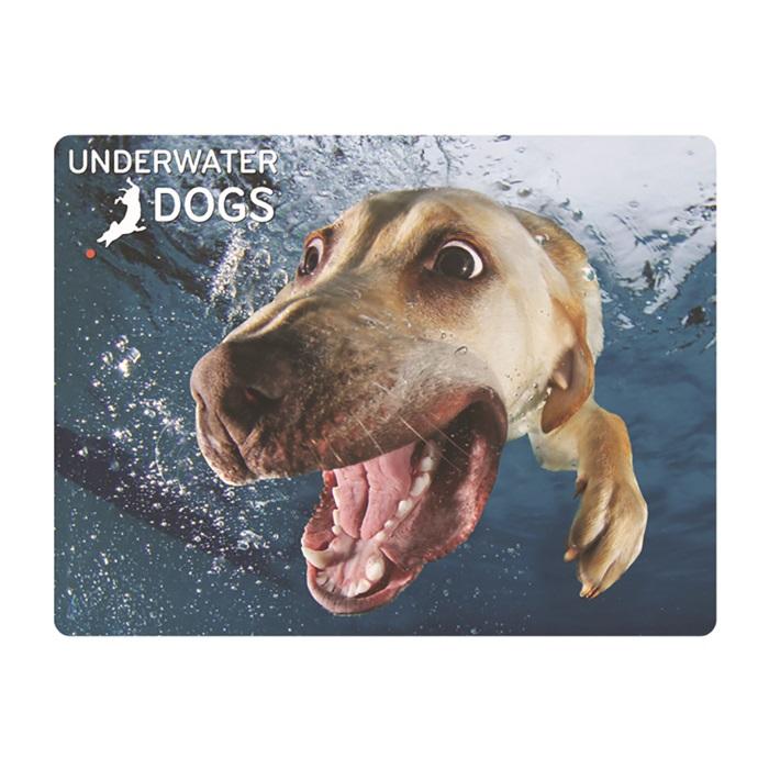 Prime3D POUNCE 年間定番 犬のベラ オーバーのアイテム取扱☆ 3Dポストカード