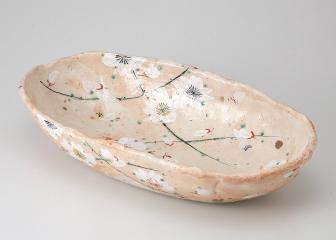 淡墨桜 楕円大鉢
