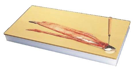 鮮魚専用プラスチックまな板 5号B【業務用まな板】【カッティングボード】【プラスチックまな板】【真魚板】【いずれも】【チョッピング・ボード】【業務用厨房機器厨房用品専門店】