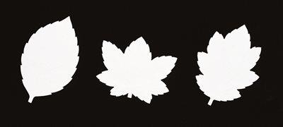 ■3コセット■葉型耐油天紙(菊)■3コセット■