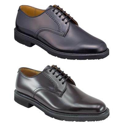 REGAL ビジネスシューズ 日本製 紳士靴 本革 送料無料 2504BFW アッパー全て本革☆ロングラン 物品 プレーントウビジネスシューズ紳士靴 雪道対応ソール 激安 激安特価 送料無料