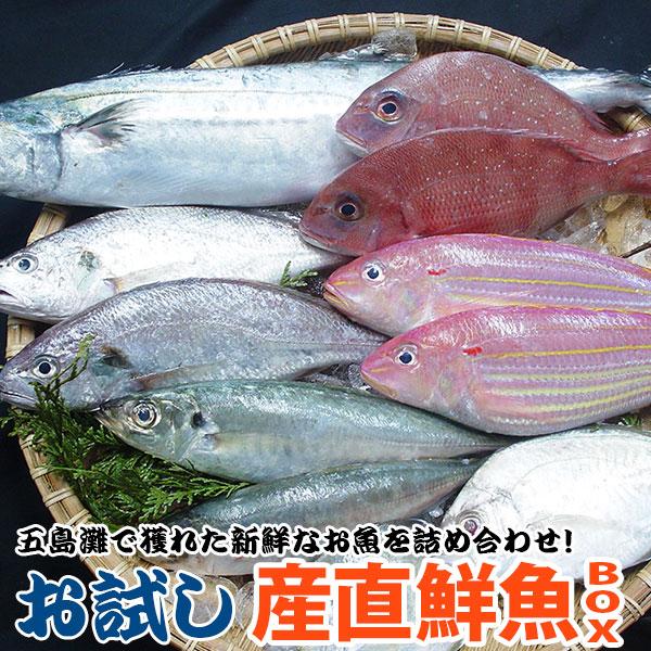 お魚好きの方必見 旬の魚をお試しとは思えない質と量でご提供 お試し鮮魚セット お一人様一回限定 新作販売 驚きの値段 その時期の旬のお魚をセットにしました