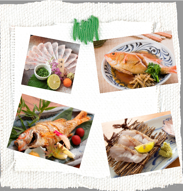 新鮮な旬の鮮魚>赤ムツ(ノドクロ・ノドグロ)