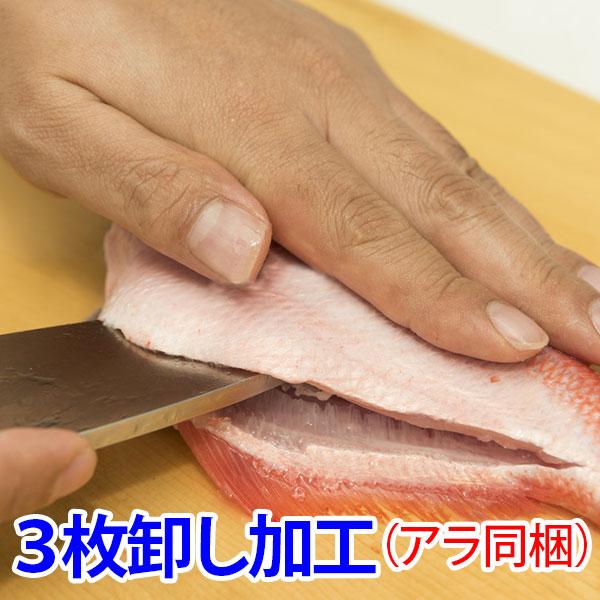 鮮魚と同時にご購入でお魚を3枚におろしてお届けします アラも同時に希望の方はこちら 3枚卸し加工オプション 供え 魚を捌くのが苦手な方も安心 アラ同梱 ※単品購入不可商品 ブランド買うならブランドオフ