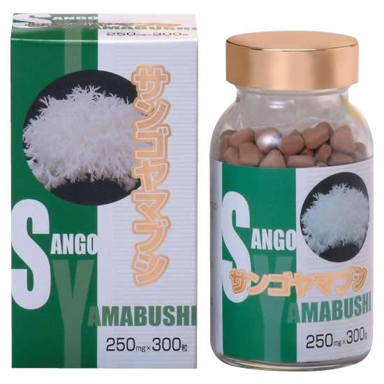 【代引き・同梱不可】サンゴヤマブシ 粒 300粒入(健康回復)