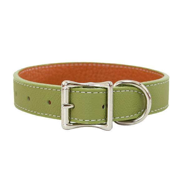 Auburn Leathercrafters トスカーナ本革カラー 45cm×2.5cm グリーン 16238【ペット 犬用品】