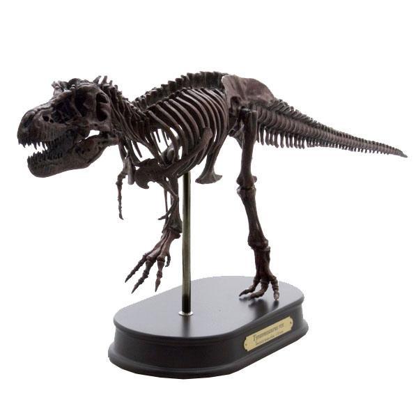 ティラノサウルス スケルトンモデル FDS601/BR(70100)【玩具】