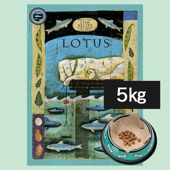 ロータス グレインフリー フィッシュレシピ (小粒) 5kg 犬 ドッグフード ドライ