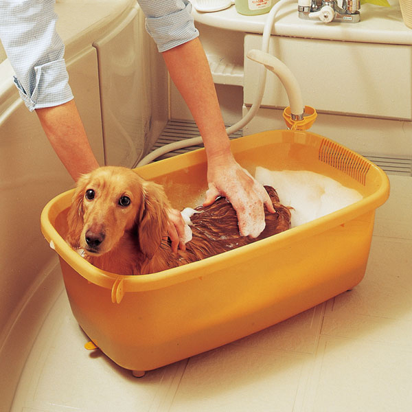 Bathtub BO 600E Small Size Dog Bathtub Bath IRIS OHYAMA For The Pet