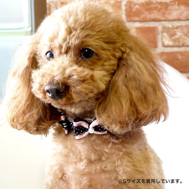 【犬・カラー・首輪】 ふたつリボンの水玉カラー SS 首輪 Luludoll(ルルドール)dk194 日本製】ドッグウェア キャットウェア 小型犬