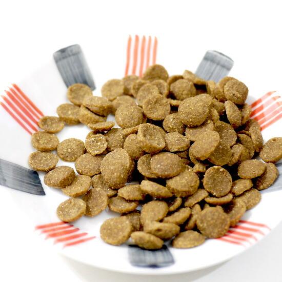 【正規品】キアオラ ラム 5kg【割引クーポンあり】【賞味期限2020/1~】KiaOra ドッグフード ドライフード 全犬種 年齢対応