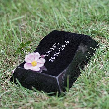 【Petcoti】【屋外用ペット墓石】Nami-ishi(波石)Mサイズ ブラック(インドKUS) No-06